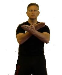 Wing Chun Kuen forms